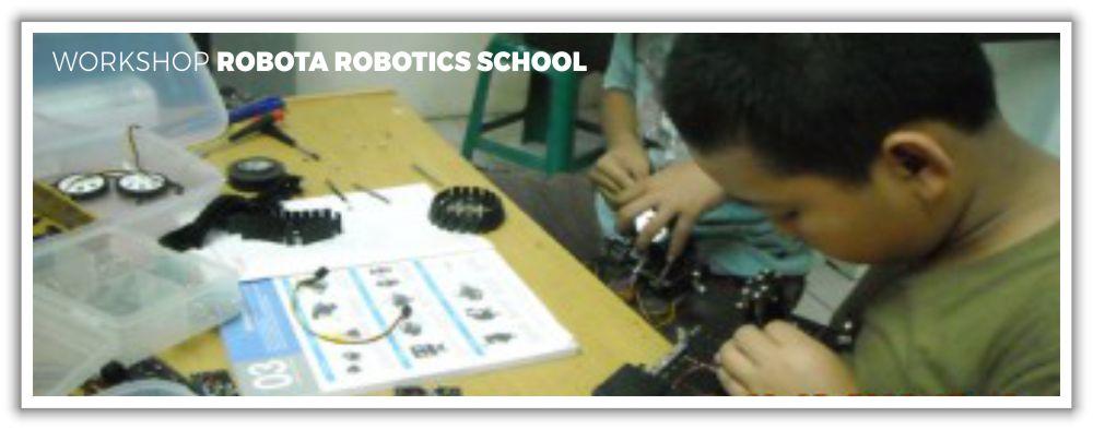 Workshop Robota Robotics School